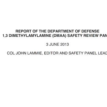 DMAA Panel Report